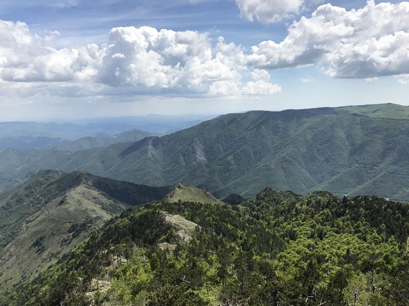 paysage du Mont Aigoual