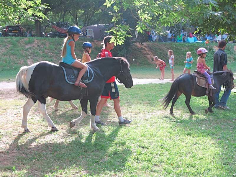 groupe pour l'activité poneys